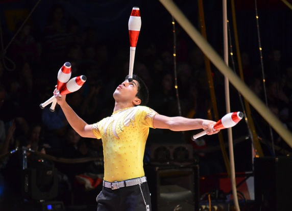 Cirkusák - Studium v Anglii
